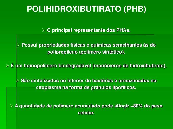 O principal representante dos PHAs.