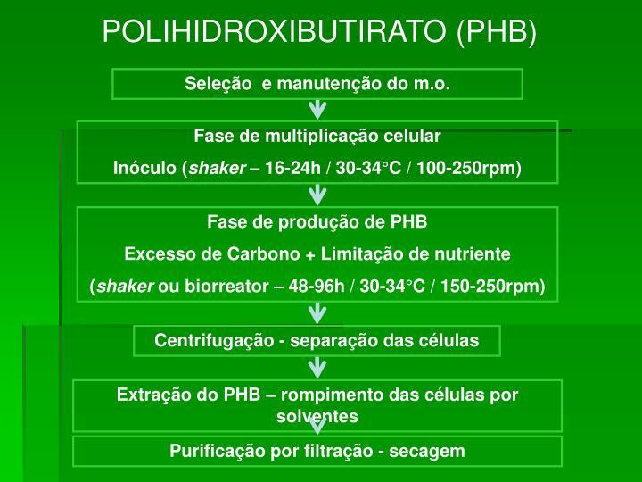 POLIHIDROXIBUTIRATO (PHB)