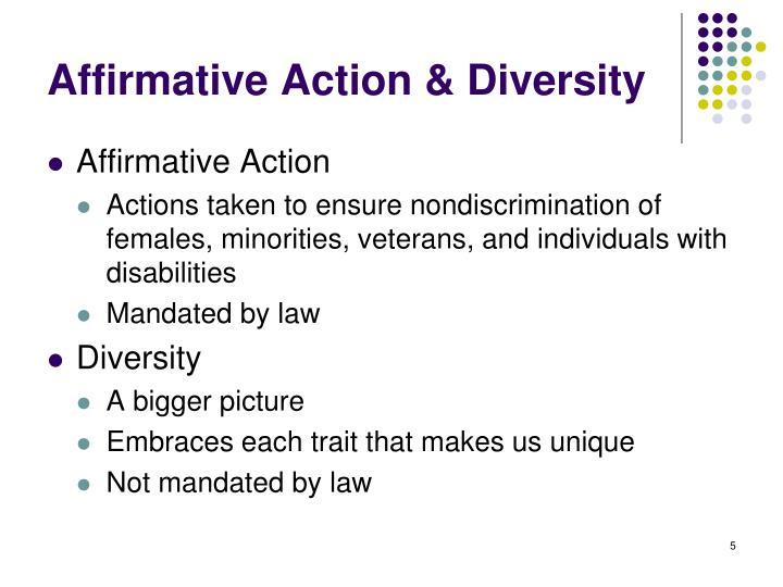 Affirmative Action & Diversity