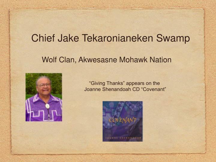 Chief Jake Tekaronianeken Swamp