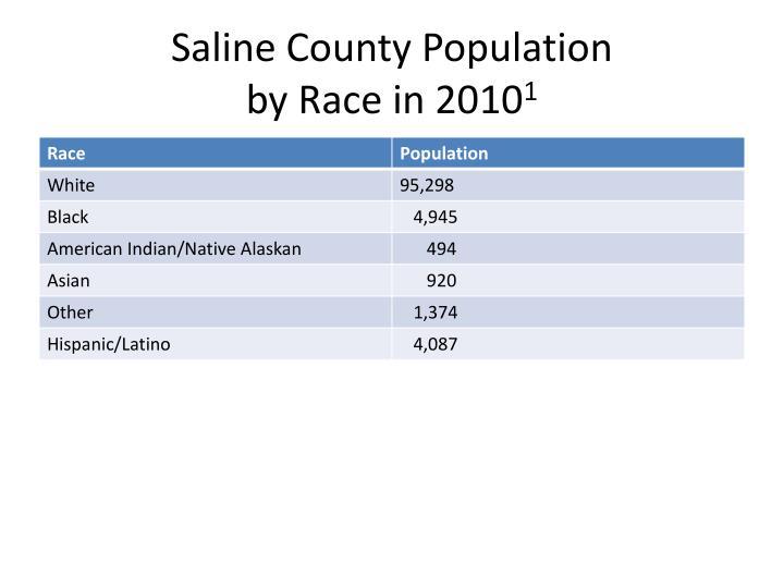 Saline County Population