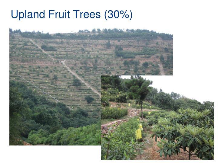 Upland Fruit Trees (30%)