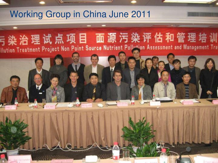 Working Group in China June 2011