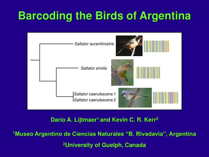 Barcoding the Birds of Argentina