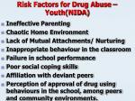 risk factors for drug abuse youth nida