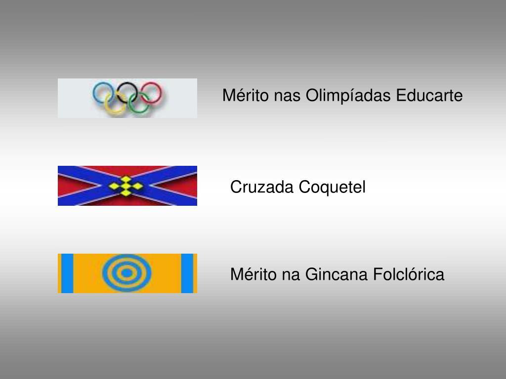 Mérito nas Olimpíadas Educarte