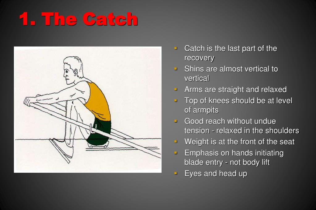 1. The Catch