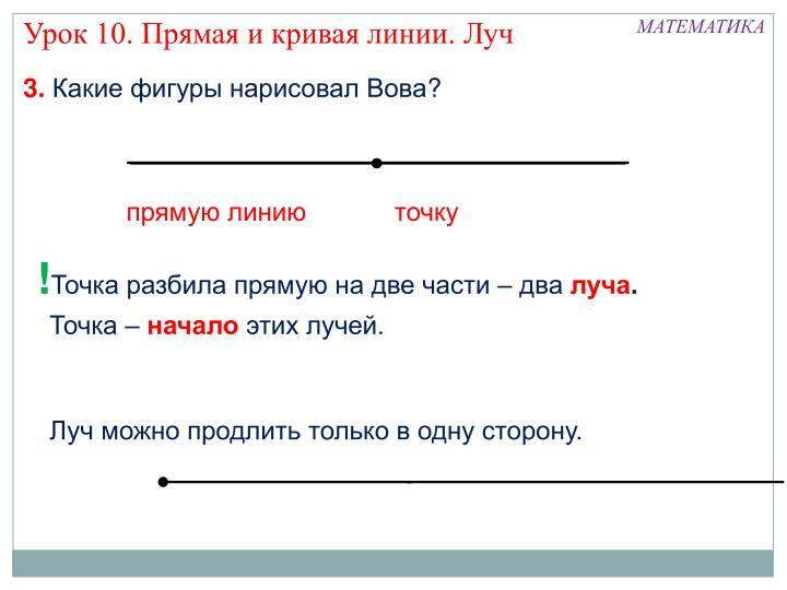 Урок 10. Прямая и кривая линии. Луч