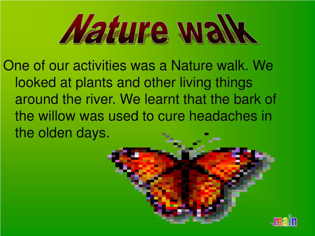 One of our activities was a Nature walk. We looked at plants and other living things around the river. We learnt that the bark of the willow was used to cure headaches in the olden days.