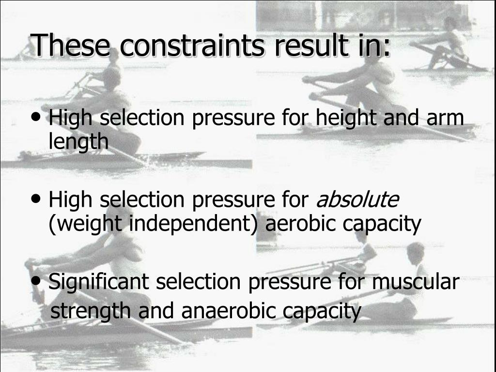 These constraints result in:
