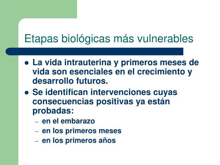 Etapas biológicas más vulnerables