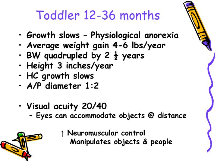 Toddler 12-36 months