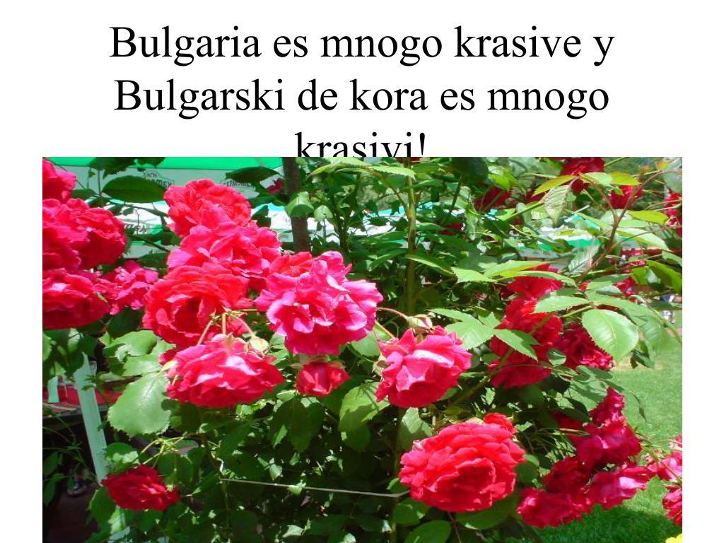 Bulgaria es mnogo krasive y