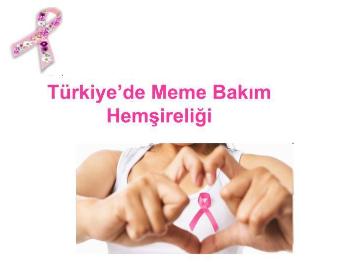 Trkiyede Meme Bakm Hemirelii