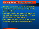 encapsulation of blue lagoon10