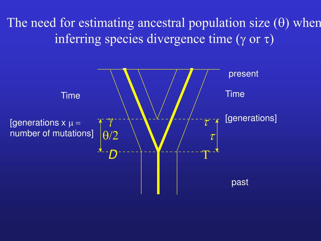 The need for estimating ancestral population size (