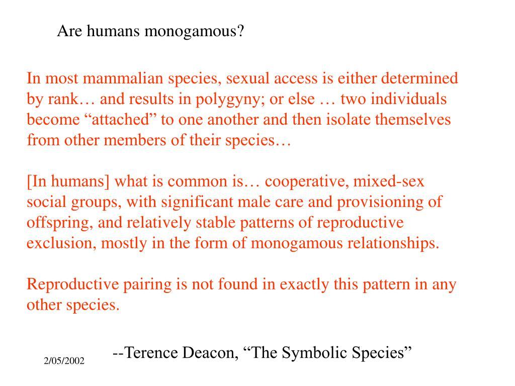 Are humans monogamous?