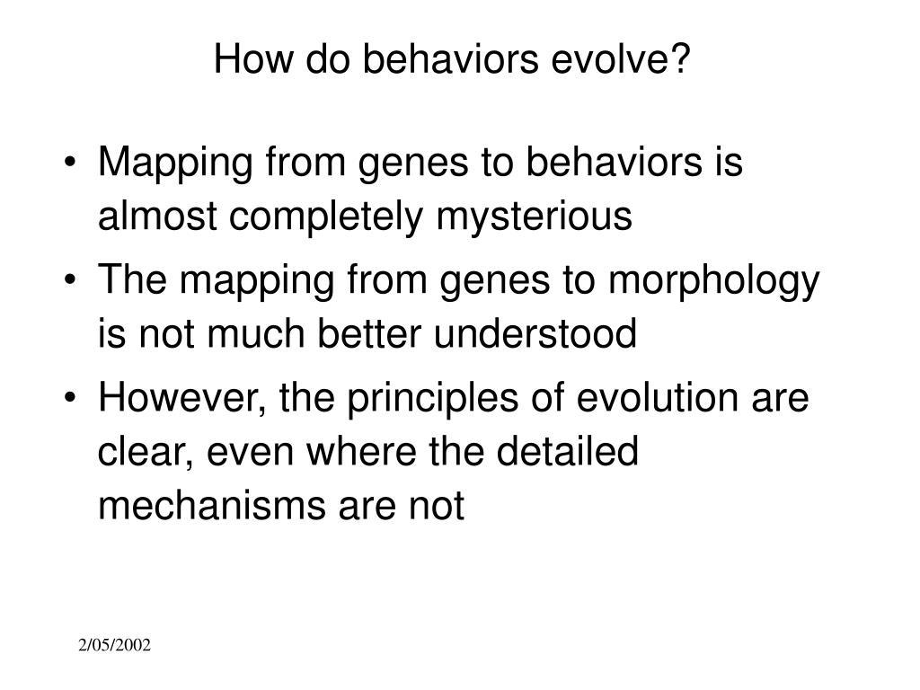 How do behaviors evolve?