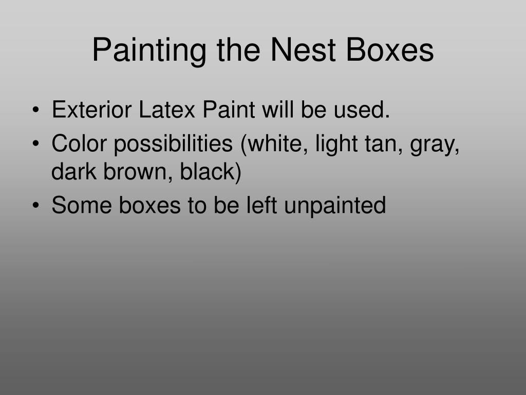 Painting the Nest Boxes