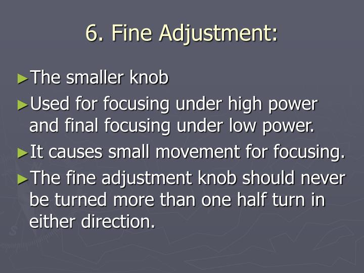6. Fine Adjustment: