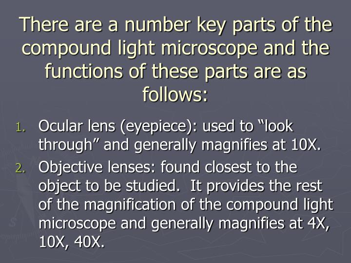 There are a number key parts of the compound light microscope and the functions of these parts are as follows: