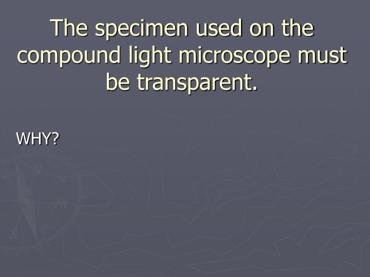 The specimen used on the compound light microscope must be transparent.