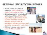 regional security challenges13