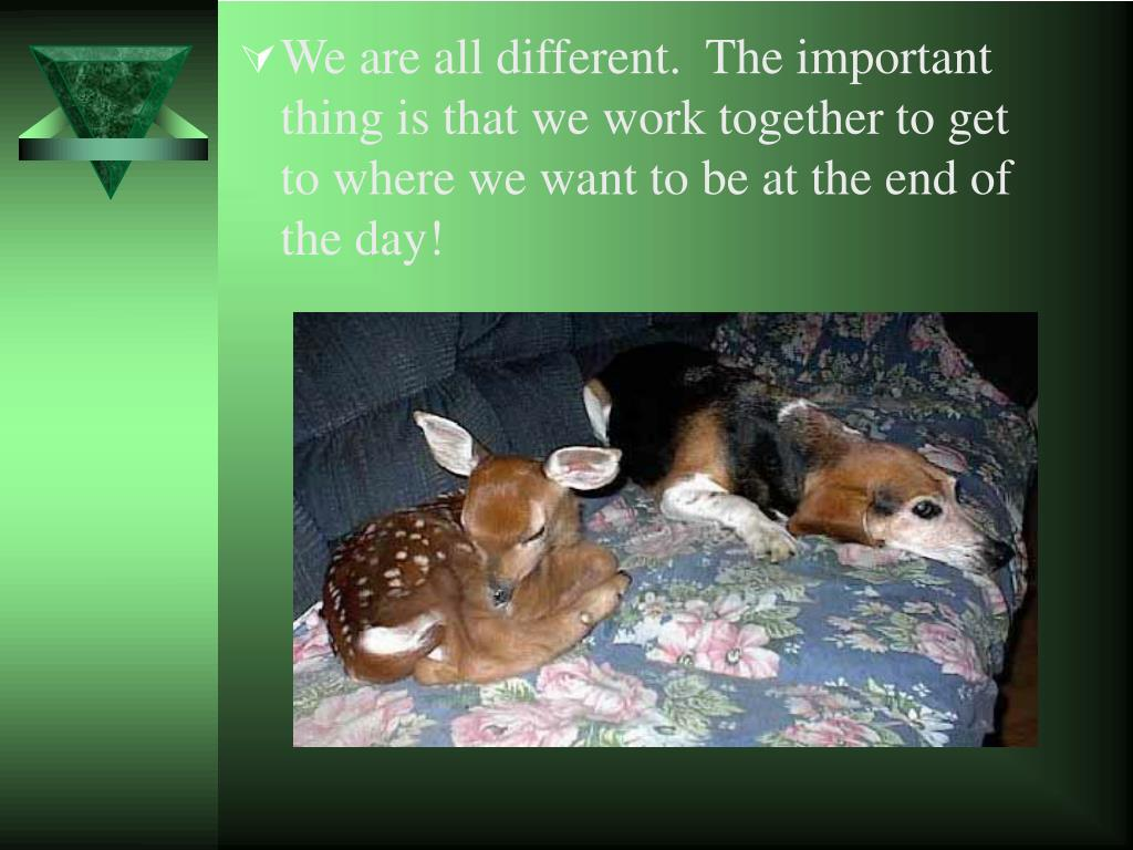 We are all different.  The important thing is that we work together to get to where we want to be at the end of the day!