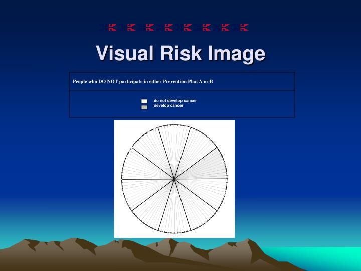 Visual Risk Image
