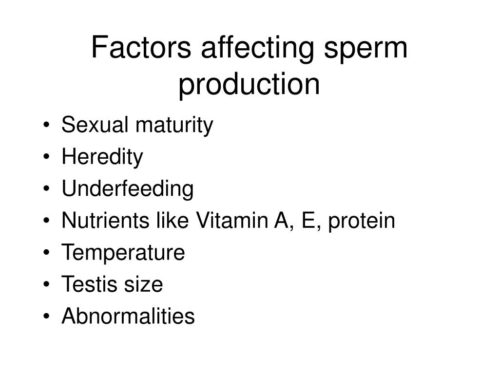 Factors affecting sperm production