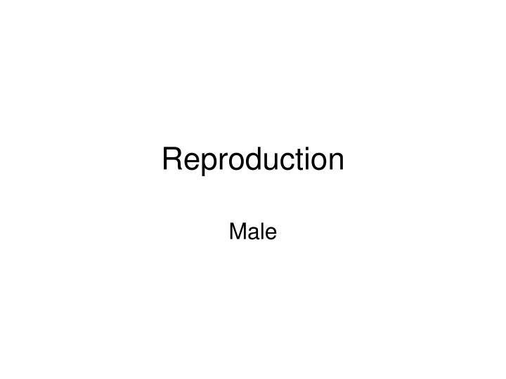 Reproduction l.jpg