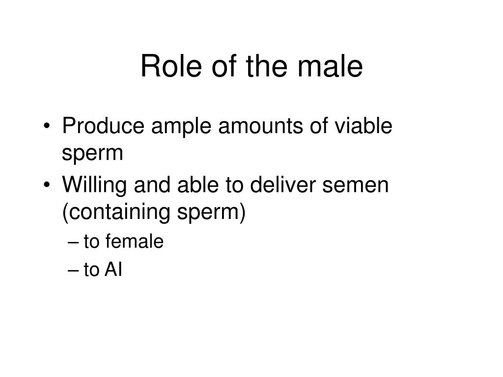 Role of the male