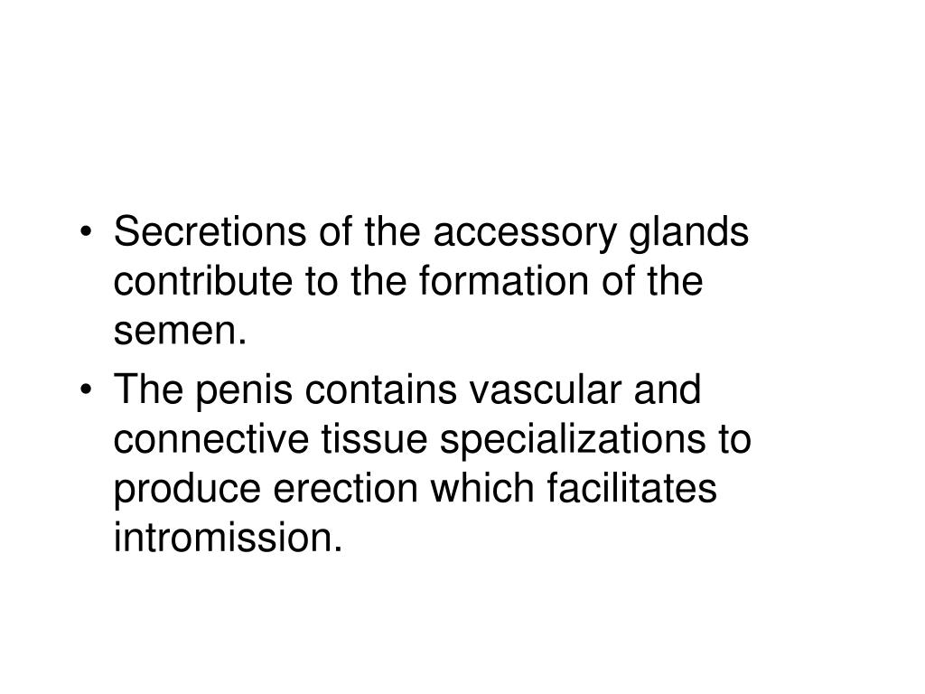 Secretions of the accessory glands contribute to the formation of the semen.