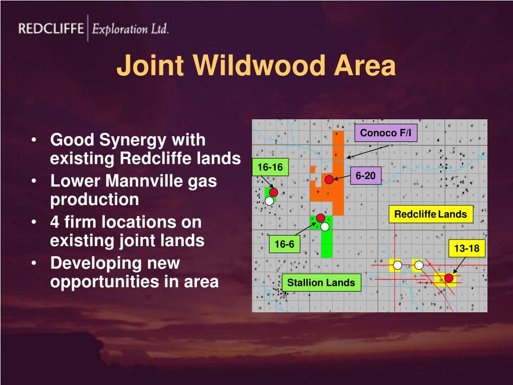 Joint Wildwood Area