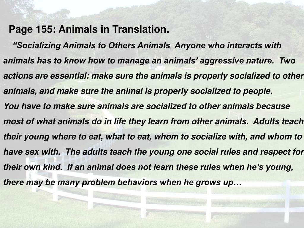 Page 155: Animals in Translation.