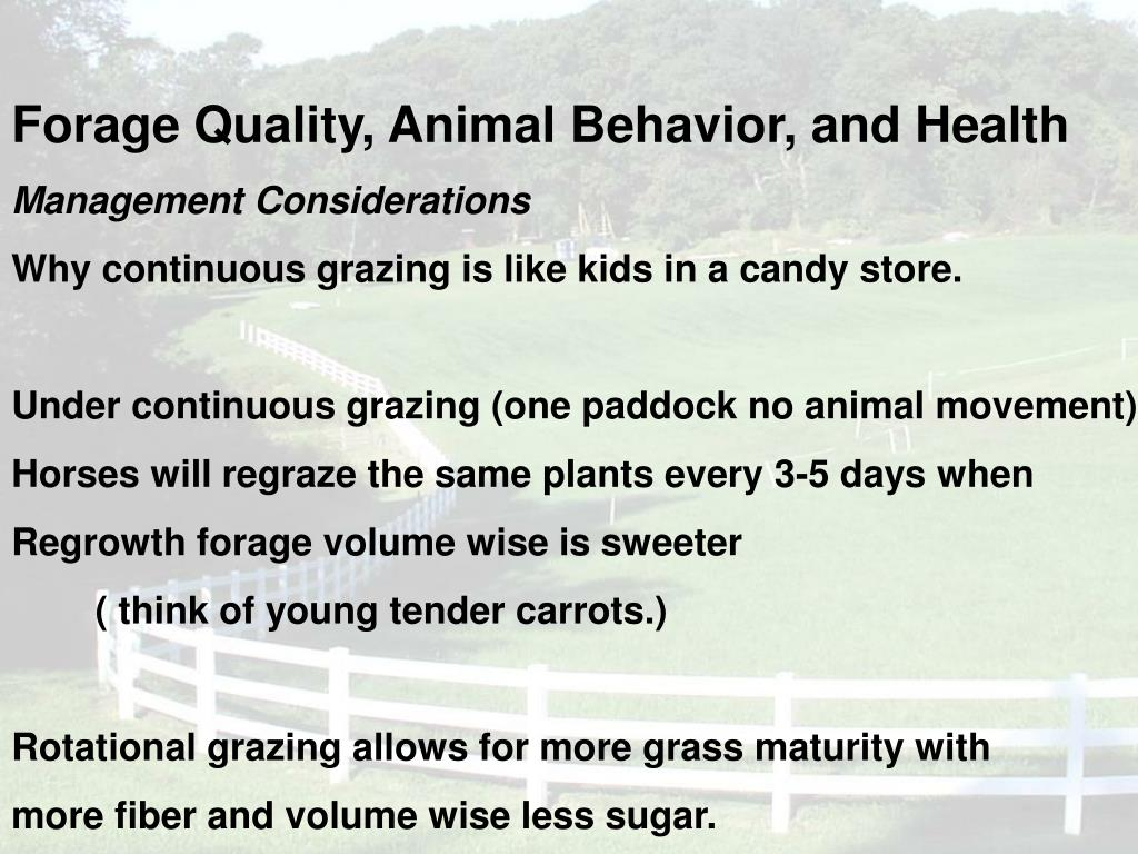 Forage Quality, Animal Behavior, and Health