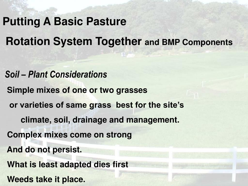 Putting A Basic Pasture