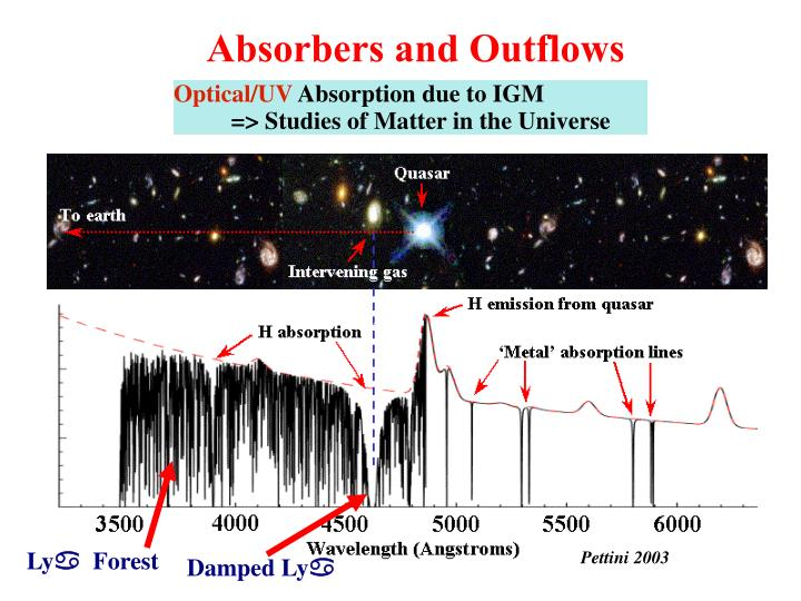 Absorbers and Outflows