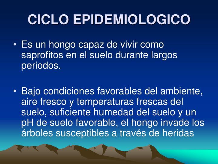 CICLO EPIDEMIOLOGICO
