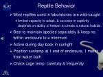 reptile behavior