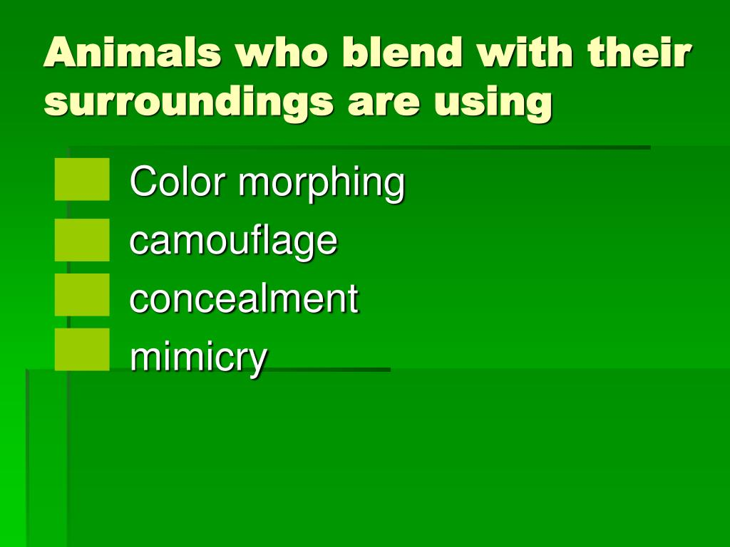 Animals who blend with their surroundings are using
