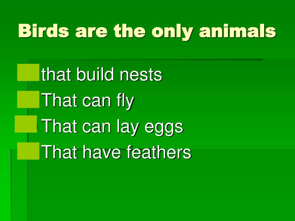 Birds are the only animals