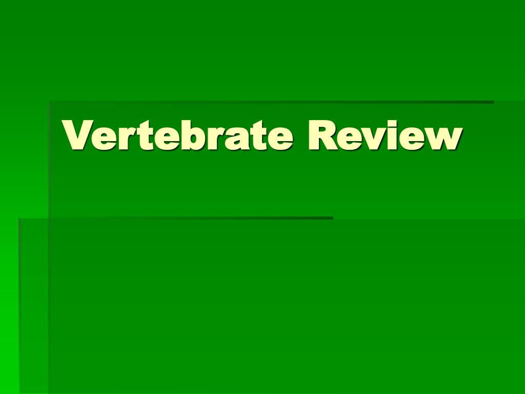 Vertebrate Review
