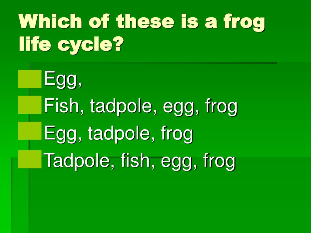 Which of these is a frog life cycle?