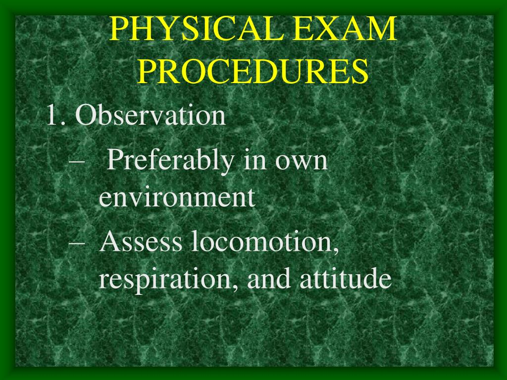 PHYSICAL EXAM PROCEDURES