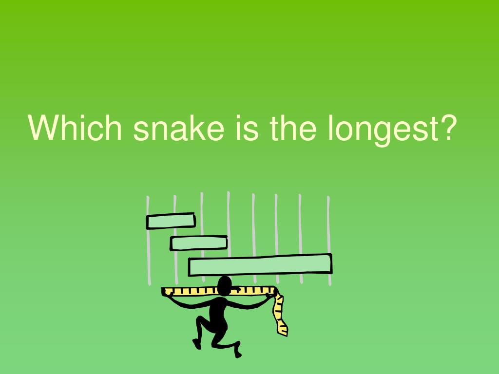 Which snake is the longest?