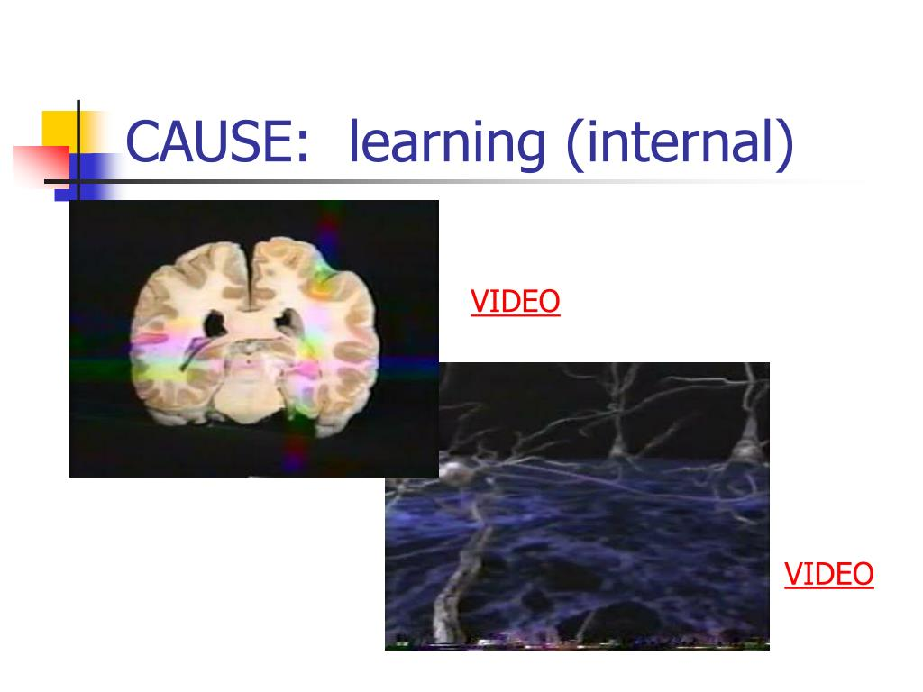 CAUSE:  learning (internal)