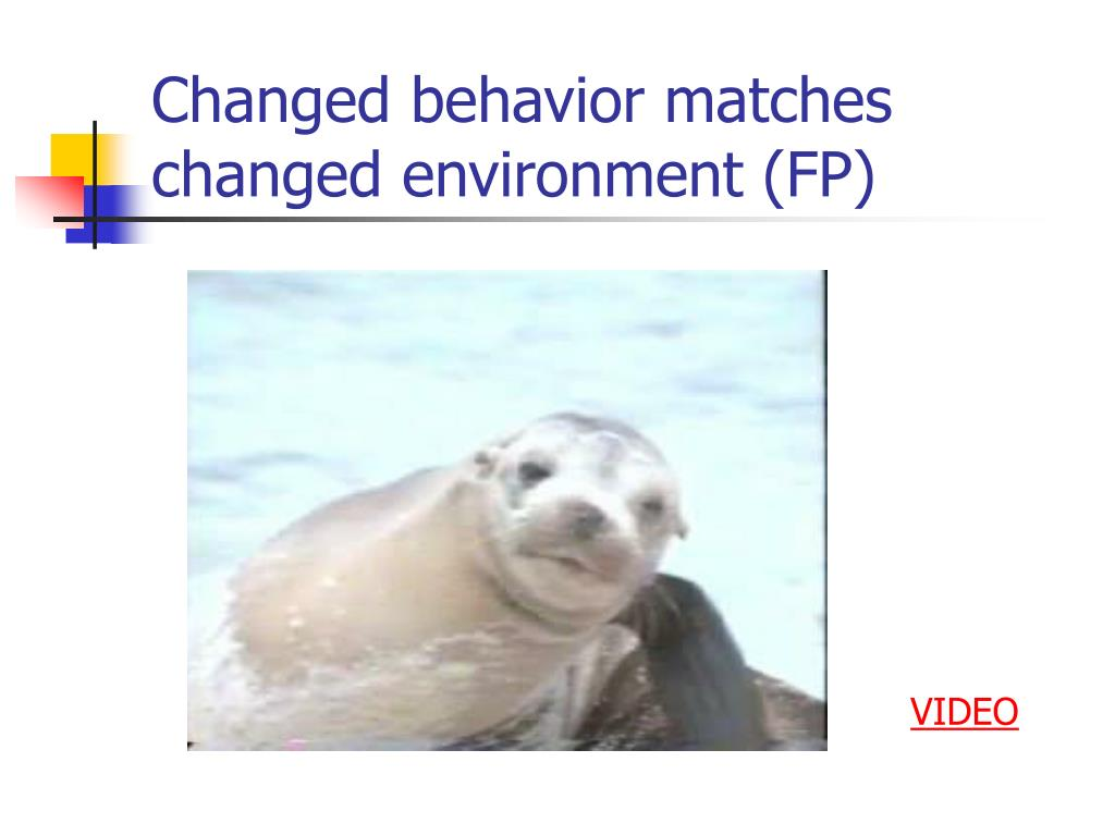 Changed behavior matches changed environment (FP)