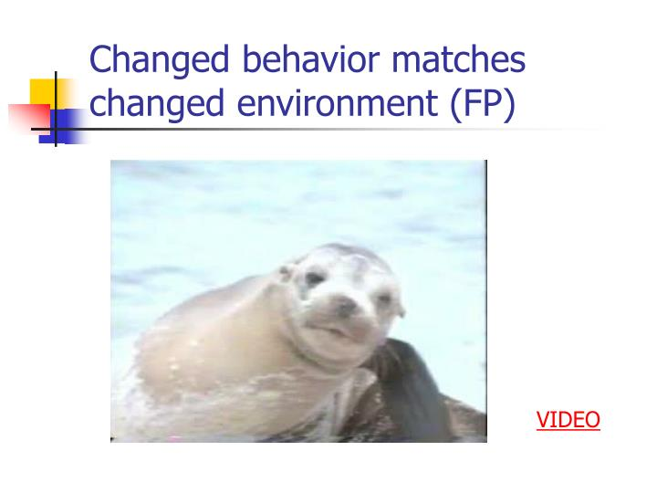 Changed behavior matches changed environment fp