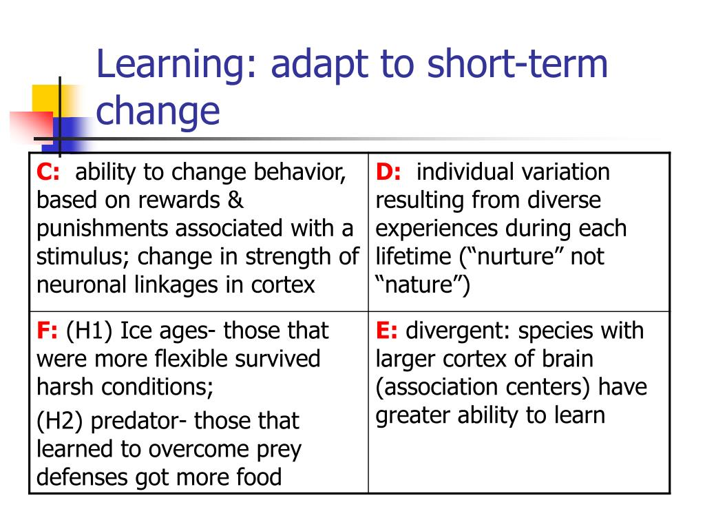 Learning: adapt to short-term change